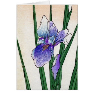19th C. Japanese Iris Card