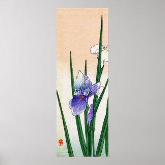 19th C. Japanese Iris Poster