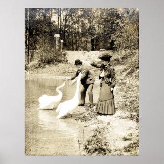 19th C. Swans in Paris Poster