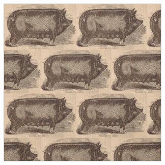 19th century farm animal print Berkshire sow breed Fabric