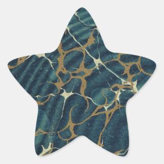 19th century marbled paper2 star sticker
