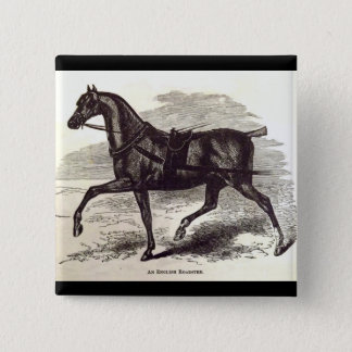 19th century print An English Roadster horse Button