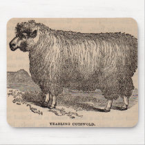 19th century print yearling Cotswold sheep Mouse Pad