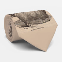 19th century print yearling Cotswold sheep Neck Tie