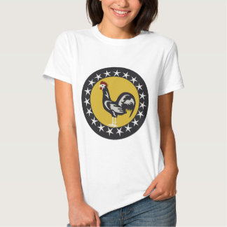 19th Fighter Squadron Tee Shirt