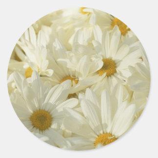 1 1/2 Inch Round Daisy Stickers