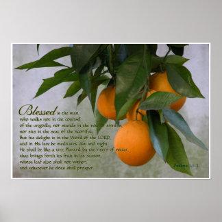 1:1 de los salmos - impresión de 3 escrituras póster