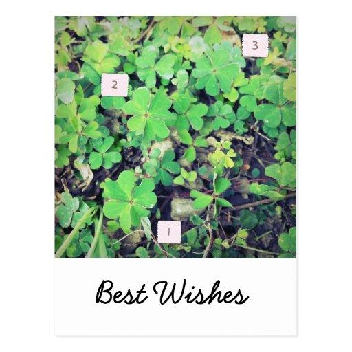 1-2-3 tréboles afortunados tarjeta postal