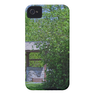 1 By the Wishing Well-horizontal.JPG iPhone 4 Case-Mate Case