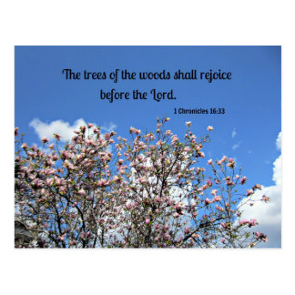 1 Chronicles 16:33 The trees of the woods... Postcard