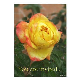 1 color de rosa amarillo y anaranjado imponente comunicados personalizados