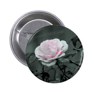 1 COLOR DE ROSA PINS