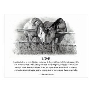 1 Corinthians 13: Amor, caballos en lápiz Tarjeta Postal