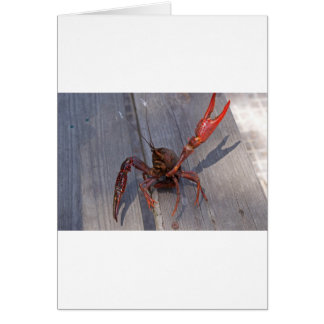1 crawfish greeting card