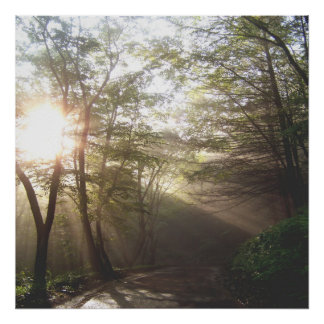 1. DAWN BECKONS The journey Collection 24x24 shown Poster