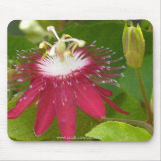 1 flor roja de la pasión alfombrillas de raton