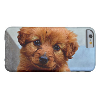 1 FUNDA DE iPhone 6 BARELY THERE