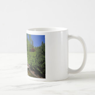 1 Joe and Marie Schedel Pagoda-horizontal.JPG Coffee Mug
