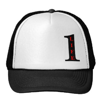 1 Life to Live  snap back hat