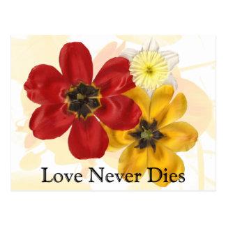 1 Love Never Dies Postcard