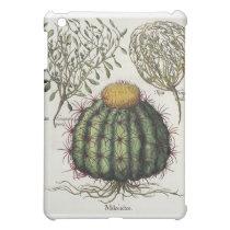 1.Melocactus; 2.Rosa Hiericontea aperta; 3.Rosa Hi Cover For The iPad Mini