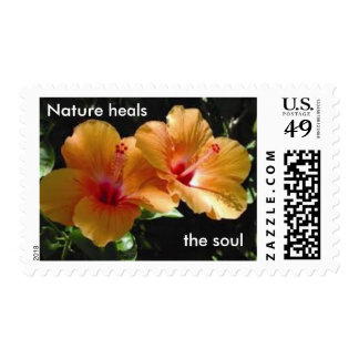 1 oz Hibiscus Nature Heals the Soul Stamp