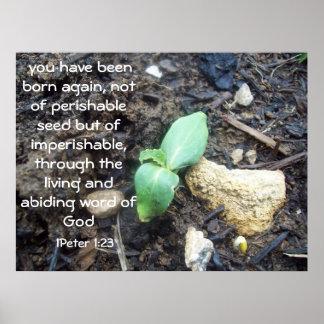 1 Peter 1:23 Poster
