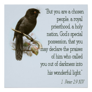 1 Peter 2 9 Christian Scripture Poster Bible Verse
