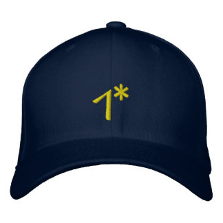 1*  POLICE SWAT HAT