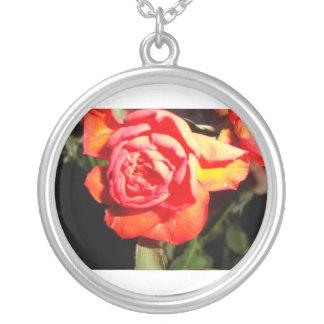 1 rosa rojo en el NCKL oscuro Colgante Redondo