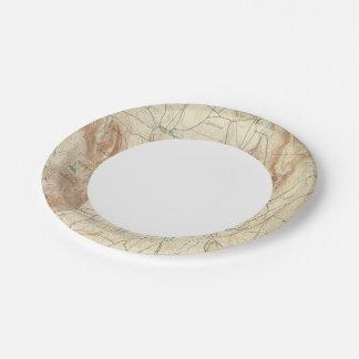 1 Sheffield sheet Paper Plate