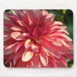 1 Starburst Pink Dahlia Mouse Pad