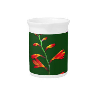 1 Strand Flower Floral photo graphic on 100 gifts Beverage Pitchers