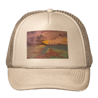 1 The Horizon on a Hat