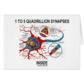 1 To 5 Quadrillion Synapses Inside (Neuron) Cards