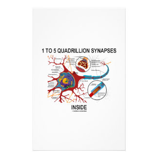 1 To 5 Quadrillion Synapses Inside (Neuron) Customized Stationery