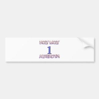 1 year old designs bumper sticker