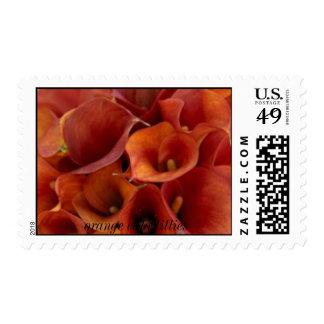 1a, orange cala lillies postage