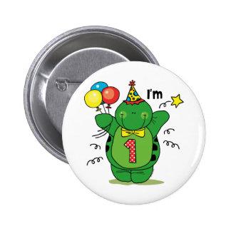 1r cumpleaños de la tortuga feliz pins