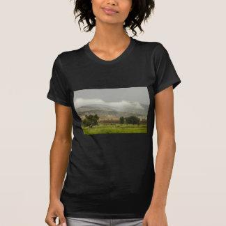 1r Día de gran inundación de Colorado de la lluvia Camisas