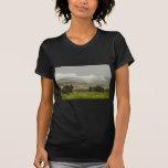 1r Día de gran inundación de Colorado de la lluvia Camisetas