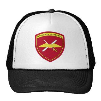 1r Emblema Grecia de la brigada de aviación de ejé Gorras