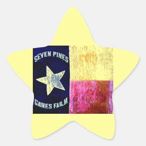 1r Infantería de Tejas, la brigada de la capilla, Calcomania Forma De Estrella Personalizadas