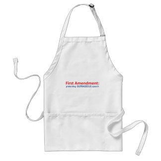 1st Amendment: protecting speech. Adult Apron