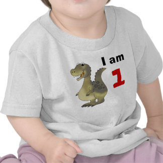 1st birthday dinosaur gift idea tshirts