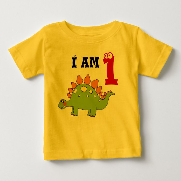 1st birthday party gift, dinosaur stegosaurus baby T-Shirt