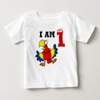 1st birthday party gift, singing parrot tshirt
