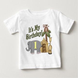 1st Birthday Safari Shirts