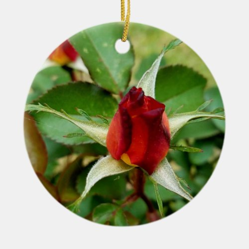 1st Christmas Red Rose Bloom Ceramic Ornament