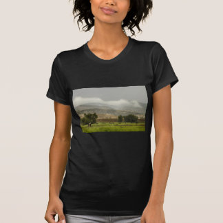 1st Day of Rain Great Colorado Flood T-Shirt